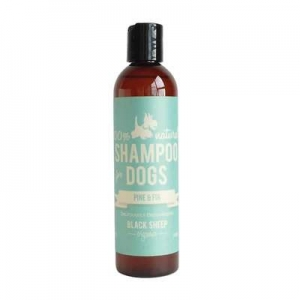 Black-Sheep-Organics-Pine-Fir-Organic-Shampoo