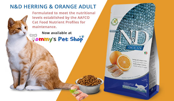 N&D-Herring&Orange-Adult-Ad-Banner