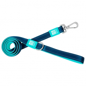 Matrix Solid Blue Leash 4x1